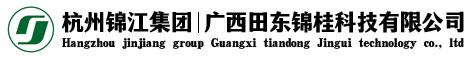 廣西田東錦桂科技有限公司